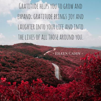 Gratitude Insta (1)